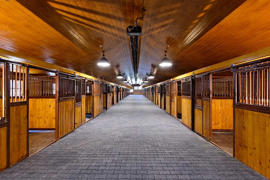 Polo Club Image